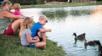 Kids feeding ducks in pond